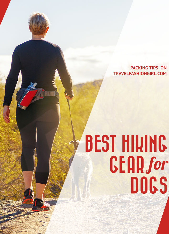 best-hiking-gear-for-dogs